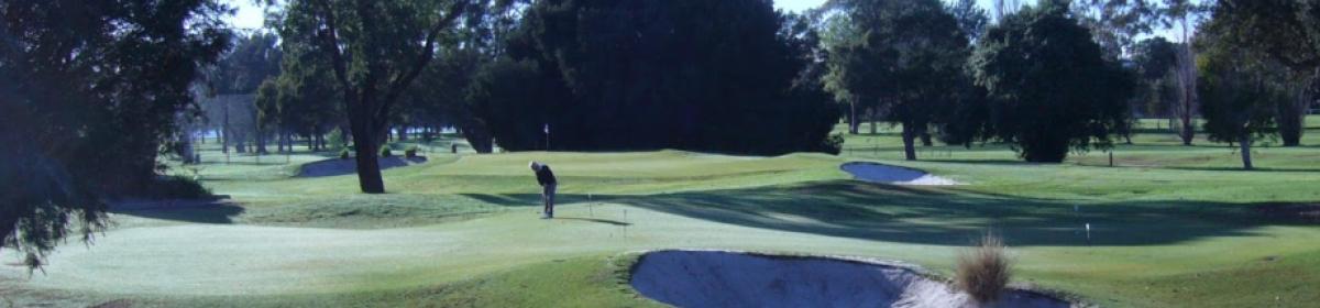 Peter Stone Golf